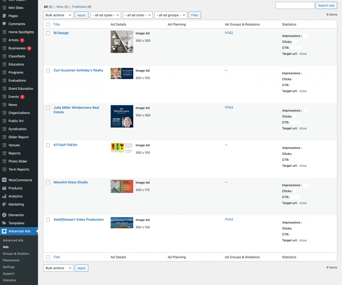 Adanced Ads Pro Dashboard Example